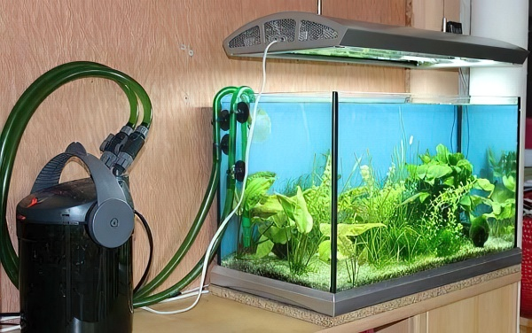 Освещение для аквариума своими руками: лампы устройство нормы + фото