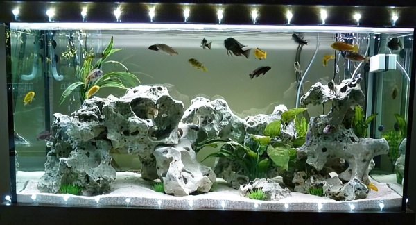 Освещение для аквариума своими руками: светодиодное и др., (фото-идеи)