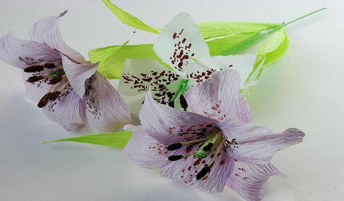 Цветы из гофрированной бумаги своими руками: мастер-класс