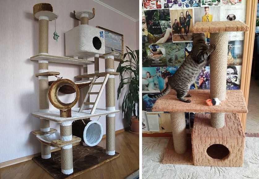 Картинки самодельных домиков для котят
