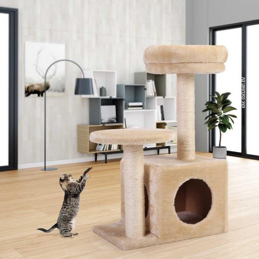 Как сделать домик для кошки своими руками: пошаговая инструкция - игровой комплекс в домашних условиях когтеточка + фото