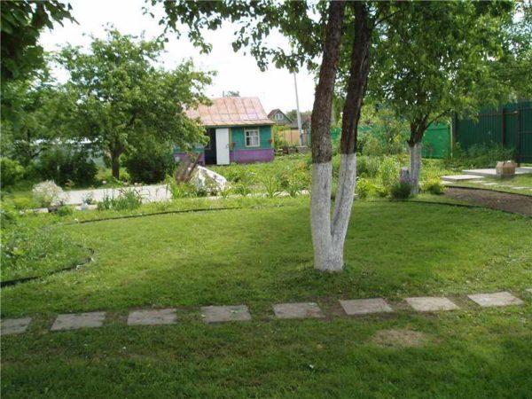 Бордюрная лента для: грядок сада газона клумбы + фото