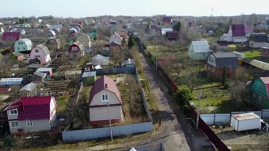 Как отгородиться от любопытных соседей на даче: нормы, правила