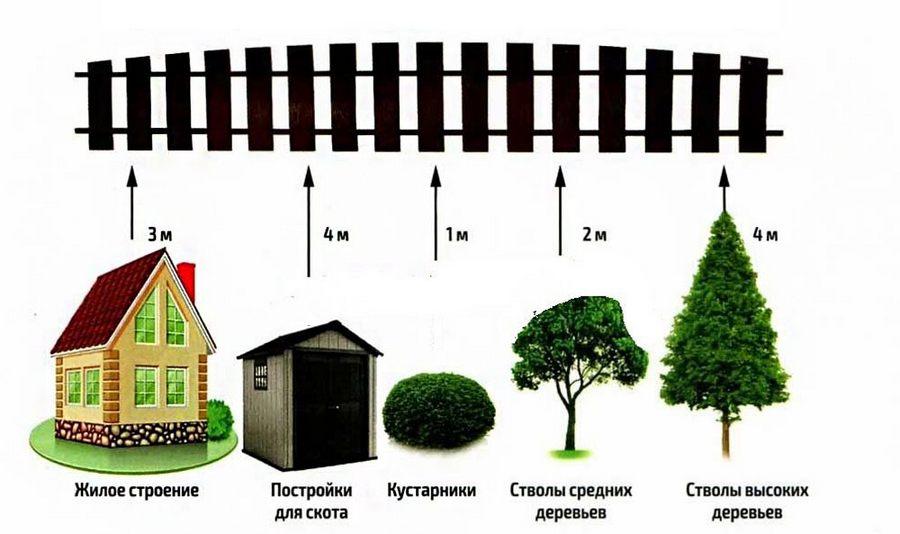 Расстояние от деревьев до забора, дома и коммуникаций, нормы СНиП и СанПиН для посадки по закону