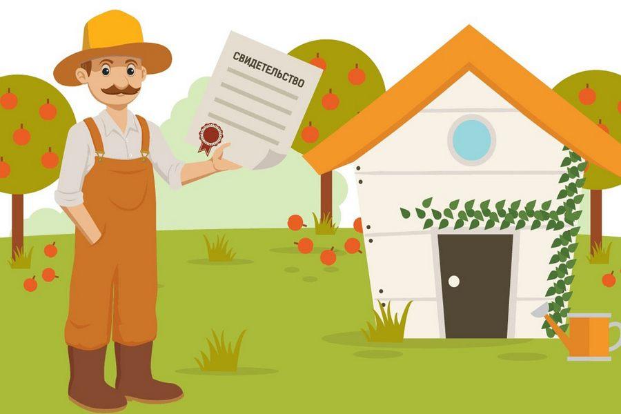 Оформление дачных земельных участков в собственность: пошаговая инструкция