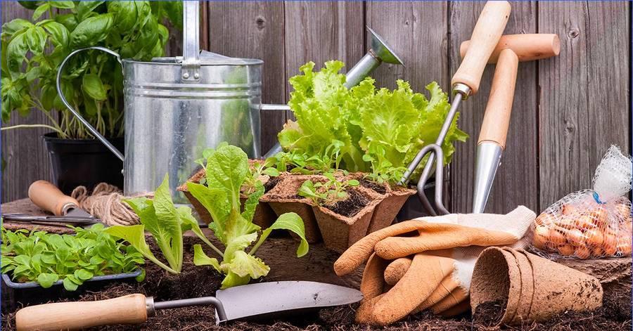Идеи для создания комфортной обстановки в саду и на дачном участке