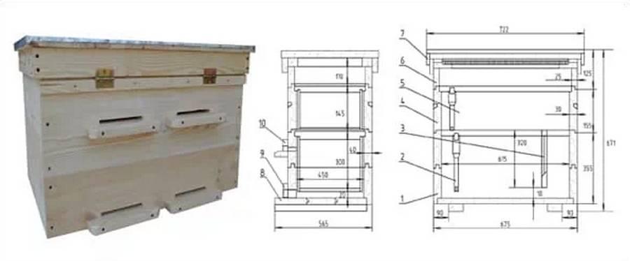 Пчелиный улей своими руками: чертежи, размеры, инструкции (фото + видео)