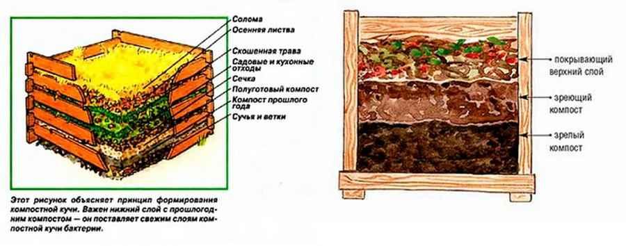 Компостная яма на участке поможет отходы превратить в ценное органическое удобрение + фото - видео