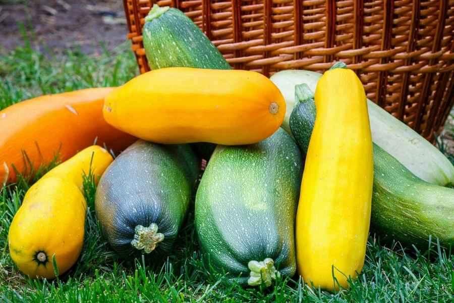 Как правильно организовать зимнее хранение овощей фруктов + фото