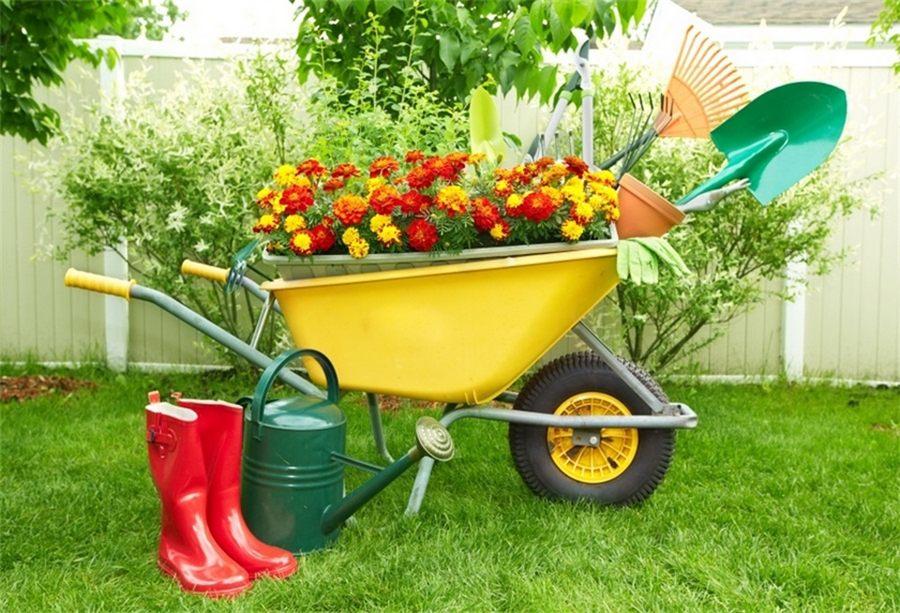 Как выбрать садовую тачку: грузоподъемность и конструкция + полезные советы