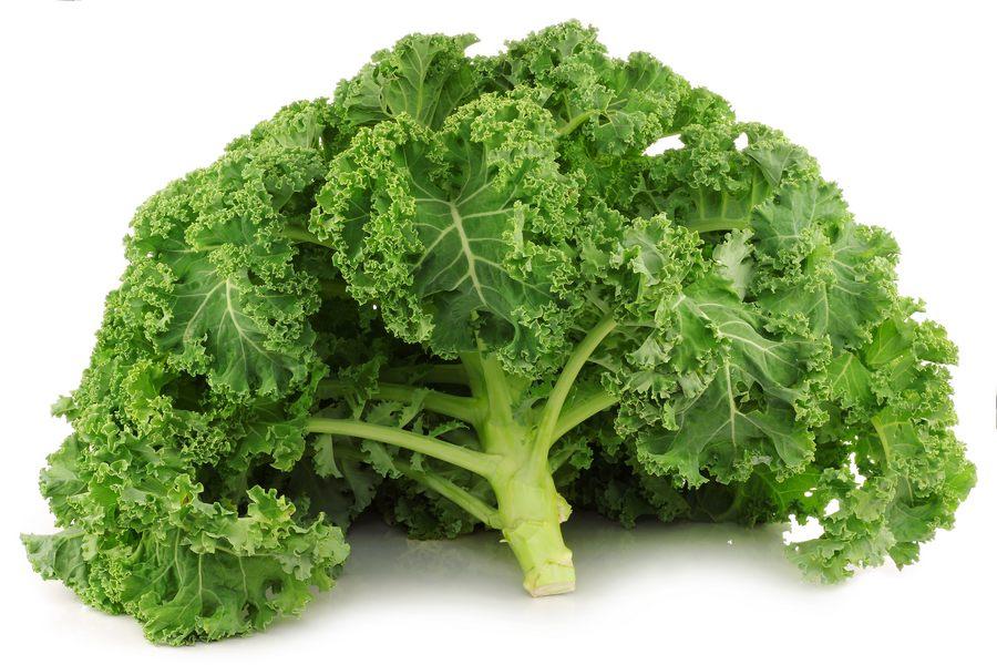 Польза и вред капусты кейл для здоровья человека, лучшие сорта, плюсы и минусы, выращивание и уборка, хранение