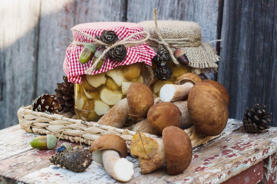 Как солить грибы в домашних условиях: пошаговые рецепты приготовления + фото